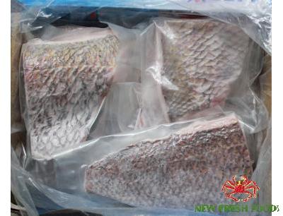 Cá Đổng Fillet Xuất Khẩu