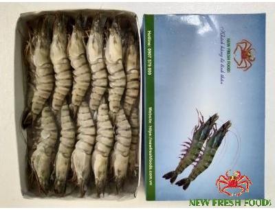 Tôm Sú Sinh Thái Nguyên Con Size 16-20