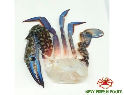 Frozen Blue Swimming Crab Half Cut 11/15