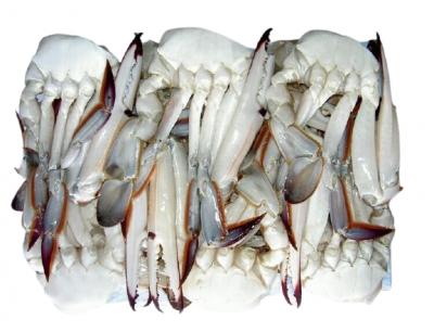 Frozen Blue Swimming Crab Half Cut 16/20